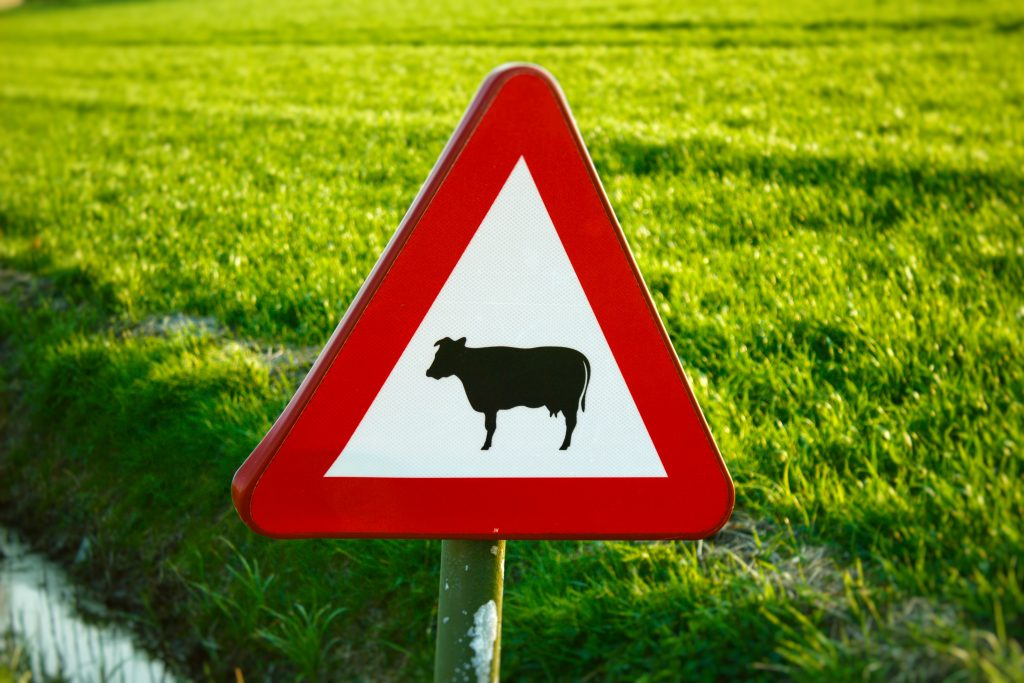 Insurance Navy Auto Insurance 9 More U.S. Road Signs You May Not Be Familiar With Cows