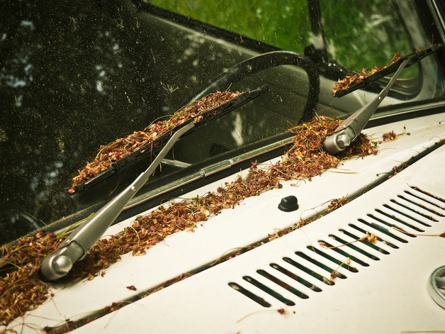 Insurance Navy Auto Insurance How Often Should You Replace Your Windshield Wiper Blades Thumbnail