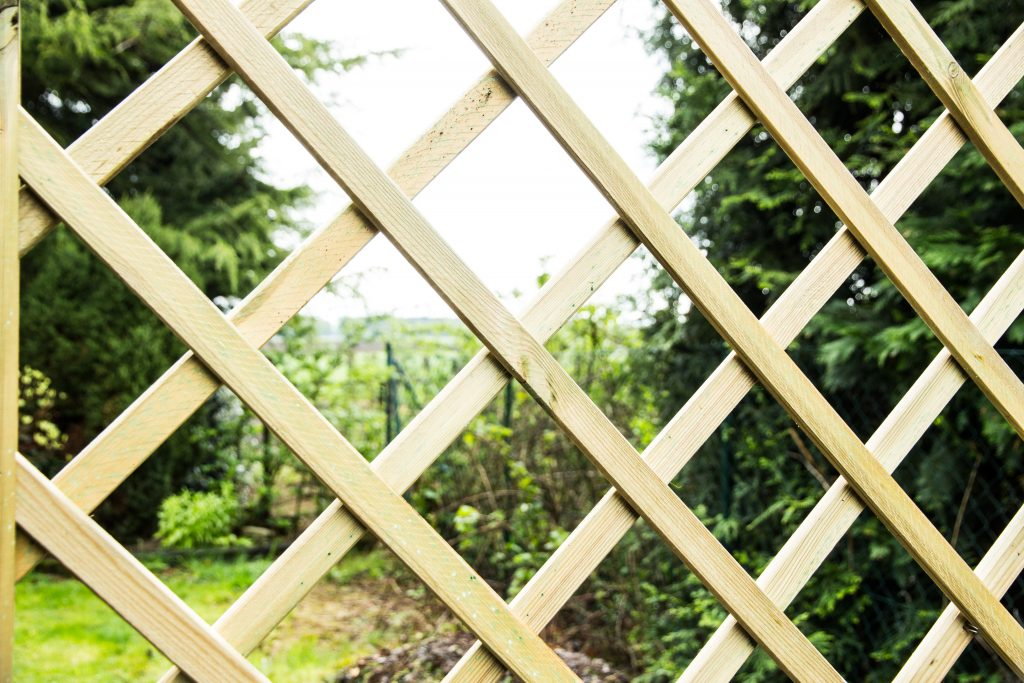 Insurance Navy Auto Insurance Simple & Affordable Ways To Improve Your Backyard Trellis
